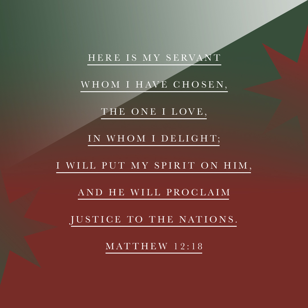 Here is my servant whom I have chosen, the one I love, in whom I delight; I will put my Spirit on him, and he will proclaim justice to the nations. - Matthew 12:18 - Verse Image